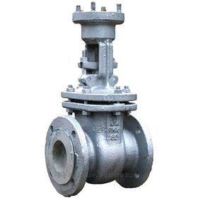 Засувки сталеві 30с941нж Ду50-500 Ру16 під ел/привод